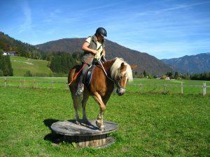 Pferd auf Podest